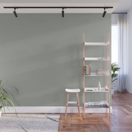 Grey Matter Solid Color Accent Shade Matches Sherwin Williams Unusual Gray SW 7059 Wall Mural