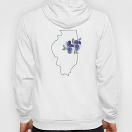 illinois // watercolor violet state flower map Hoody