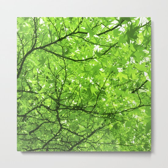 green spring tree II Metal Print