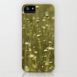 Dasies iPhone Case