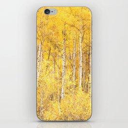 Golden Apen Trees iPhone Skin