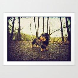 DACKEL DOG#10 Art Print