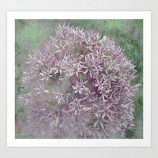 Textured Violet Alliun Art Print