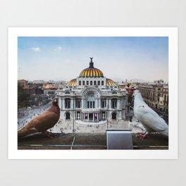 Rey Palomo Enjoying The View Art Print