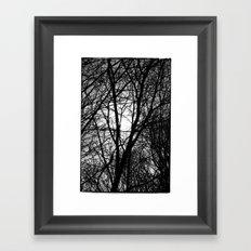 Norwegian forest IV Framed Art Print