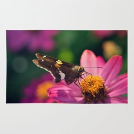 Silver-spotted Skipper Rug