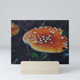 Amanita muscaria Mini Art Print