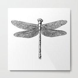 Dragonfly Vintage Illustration Metal Print
