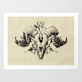 The Skull Drawing Art Print