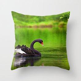 Black Swan New Zealand Throw Pillow