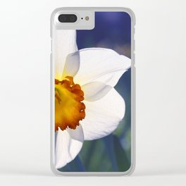 the genus of narcissus Clear iPhone Case