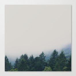 muir woods | mill valley, california Canvas Print