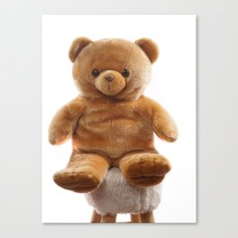 Portrait of a Teddybear Canvas Print