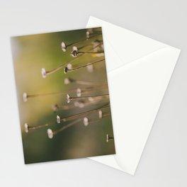 Subtleness Stationery Cards