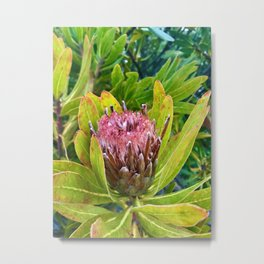 you're so ace that when i see you a smile plants itself on my face! Metal Print