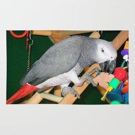 Doobie the parrot Rug