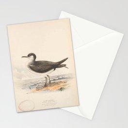 Manks Petrel, procellaria anglarum5 Stationery Cards