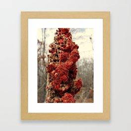 Burning Out Framed Art Print