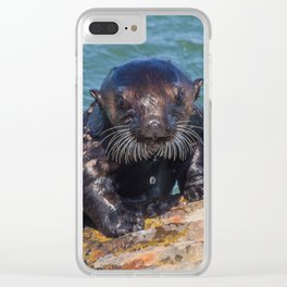 The case of the curious otter Clear iPhone Case