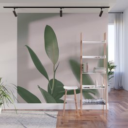01#Ficus Elastica#light&shadow Wall Mural