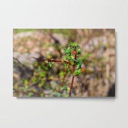 Spring Green Leaves Metal Print