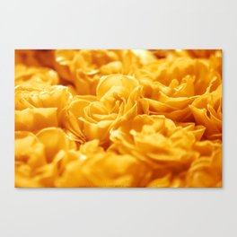 Loctaine in Yellow Canvas Print