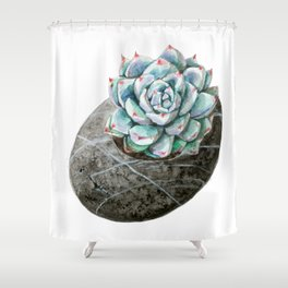 Blue Succulent with Stone Planter Shower Curtain