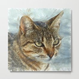 Stunning Tabby Cat Close Up Portrait Metal Print