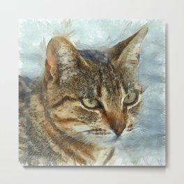 Stunning Tabby Cat Close Up Portrait Metal Print