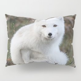 Polar Fox by Anne Elisabeth Pillow Sham