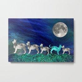 MOON CATS Metal Print