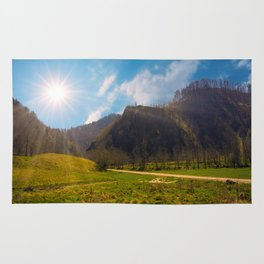 Romanian mountains Rug