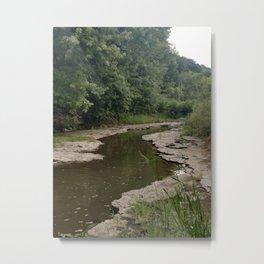 The River Bottom Metal Print