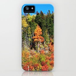 Standing out on the Hill iPhone Case