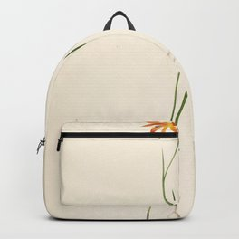 gladiolus watsonius Redoute Roses 2 Backpack