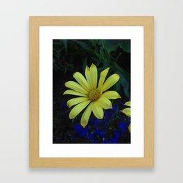 Flowers Pt. 2 Framed Art Print
