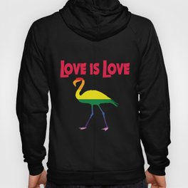 Flamingo Love is Love Rainbow Hoody