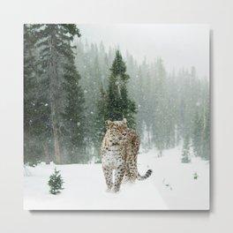 Leopard persian Metal Print
