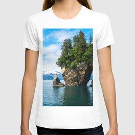 USA Kenai Fjords National Park Crag Spruce Nature Parks Rivers Rock Cliff park river T-shirt