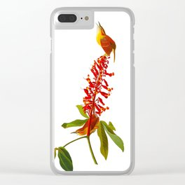 Great Carolina Wren Clear iPhone Case