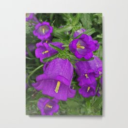 Purple Bells Metal Print