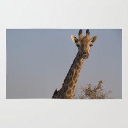 Giraffe and Oxpecker Rug