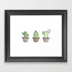 3 types of cactus Framed Art Print