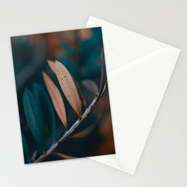 Calming Moment Stationery Cards