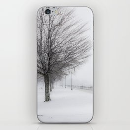 Charlotte Beach, Rochester, NY....in winter iPhone Skin