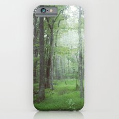 Foggy Forest Landscape Photo iPhone 6s Slim Case