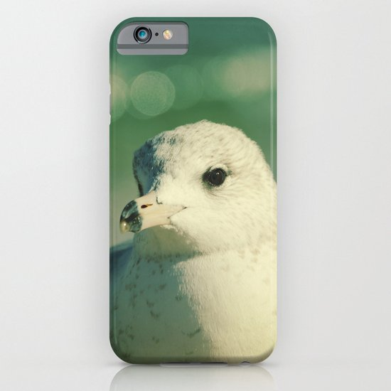 Seagull Close Up iPhone & iPod Case