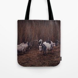 Goats in the wild, Groningen, Netherlands Tote Bag