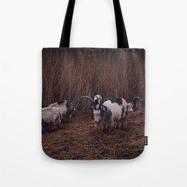 Goats in the wild, Groningen, Netherlands Tote Bag