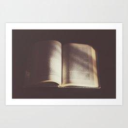 Old book Art Print